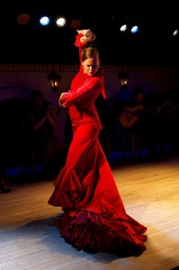 Foto de Flamenco web